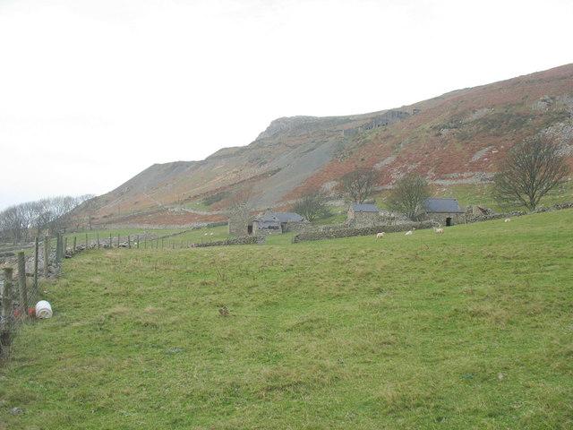 Ty Uchaf seen across sheep grazings