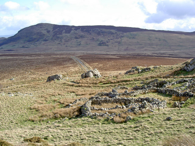 The path, portal and sheepfold