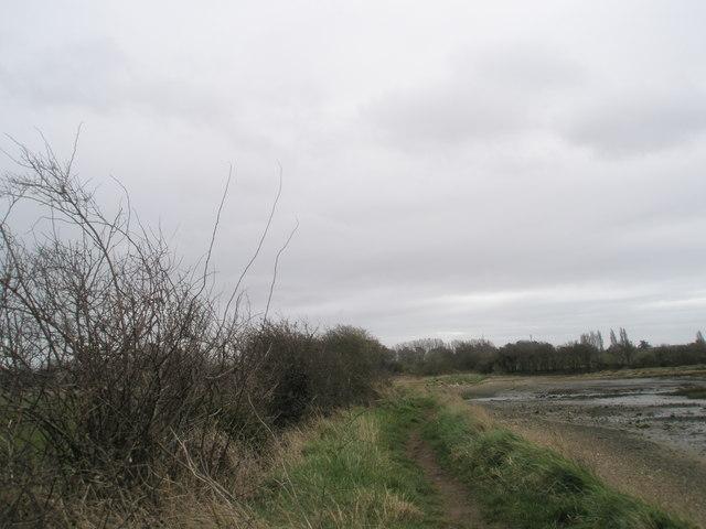 Bosham shoreline