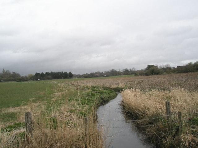 Stream running through farmland near Bosham shoreline