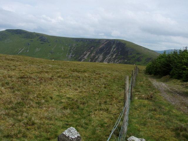 Looking towards Craig y Llyn from edge of forestry on Braich Ddu.