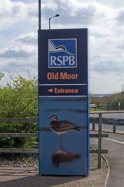 RSPB at Old Moor , near Barnsley