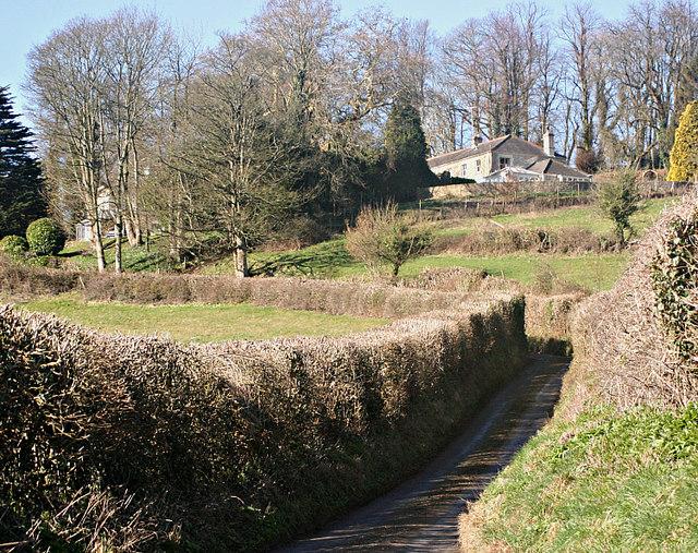 2008 : Langridge Lane