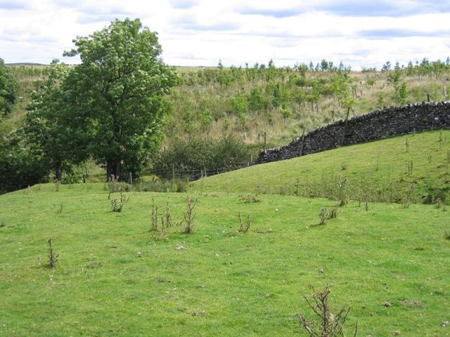 Landscape near Gill Head Barn