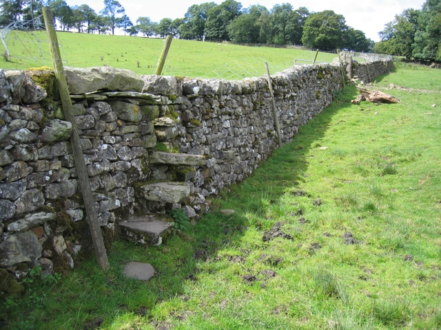 Wall and stile near Old Accraplatts