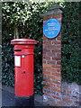 Photo of James A. H. Murray blue plaque