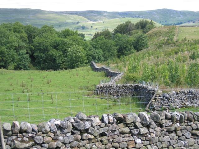 Zig-zag wall near Old Accraplatts