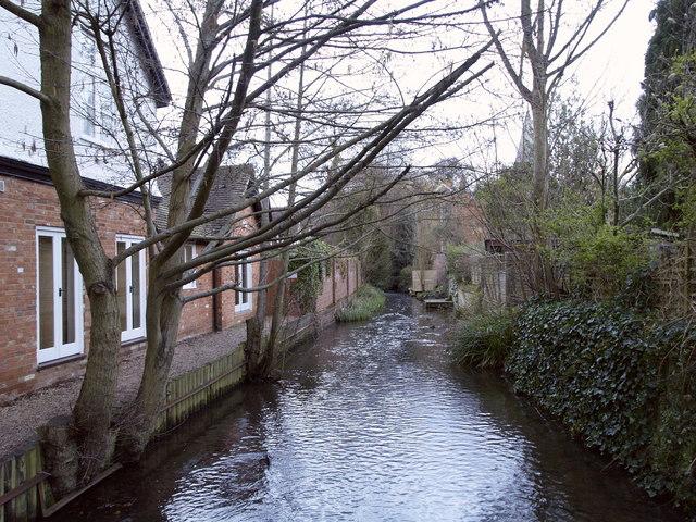 Tilling Bourne at Shere (looking eastwards)