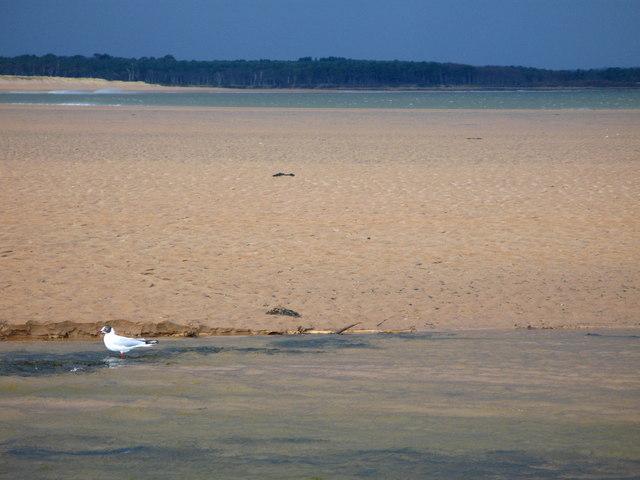 View across Biel Water and Belhaven Bay