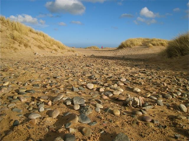 Ancient raised beach on Foveran links