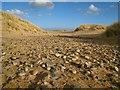 NK0023 : Ancient raised beach on Foveran links : Week 10