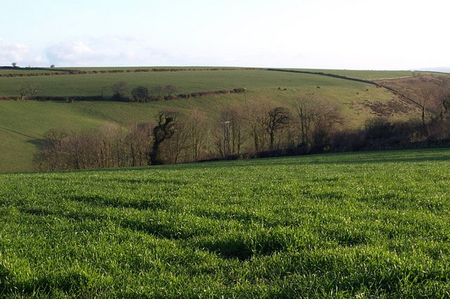 Field at Higher Tredundle