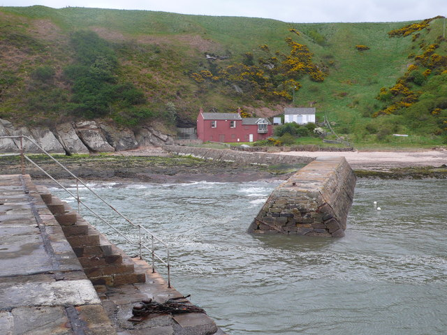 Cove Harbour