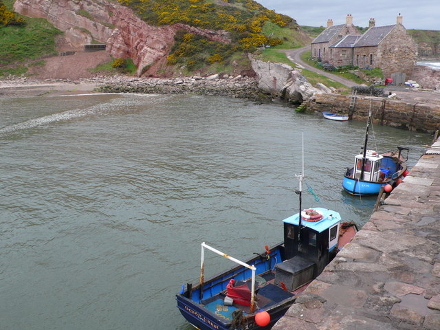 Fishing boats at the Cove