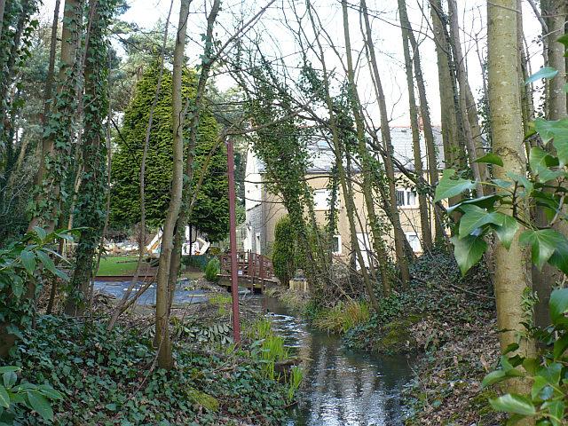 Stream near Pont Ebbw