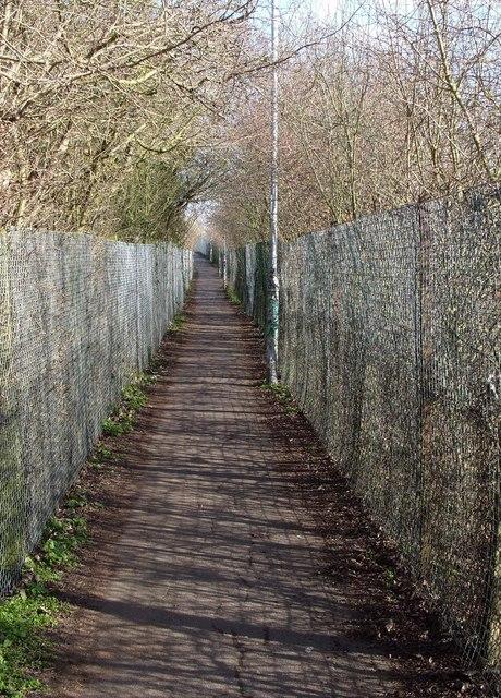Footpath across wasteland, Cherry Hinton