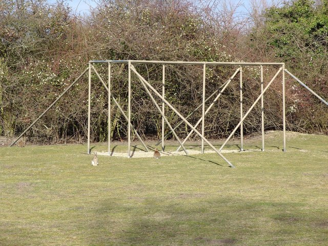 Assault Course, Cherry Hinton