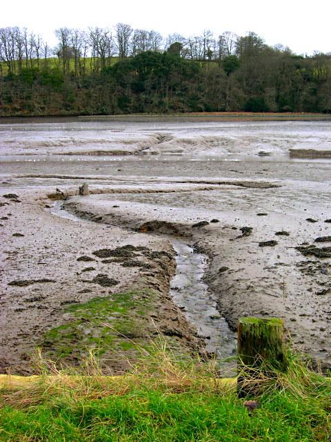 Tresillian River Mud