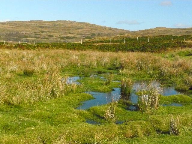 Near Ensay, Isle of Mull