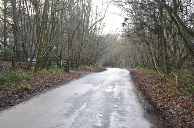 The road down Lodge Hill