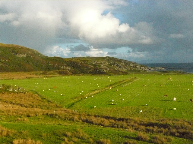View south from near Ardachy, Isle of Mull