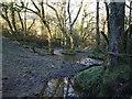 SX2585 : Stream below Badharlick by Derek Harper