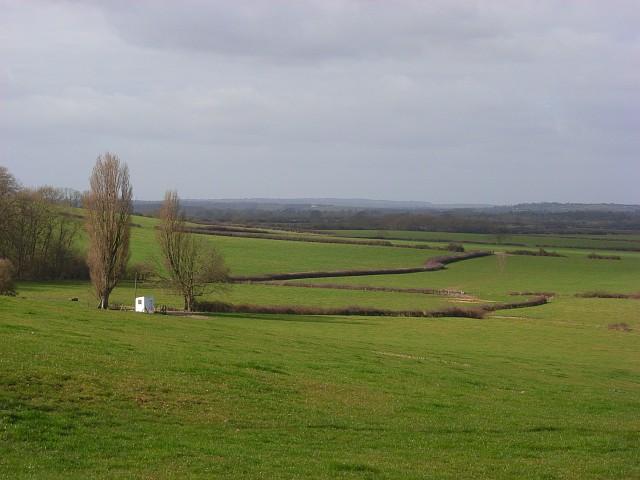 Pastures, Clare
