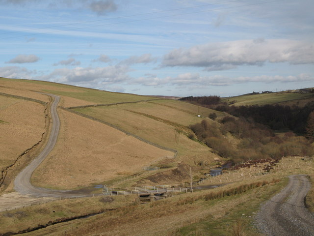 The valley of Nookton Burn