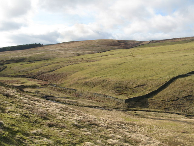 The valley of Nookton Burn (4)