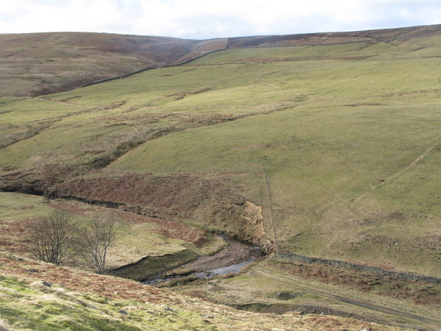 The valley of Nookton Burn (5)