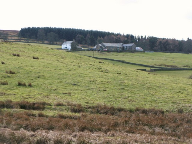 Pastures and plantation near Whitelees