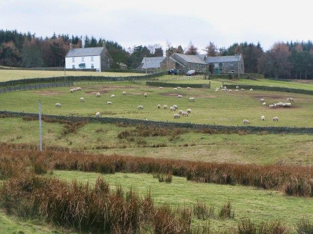 Pastures below Whitelees