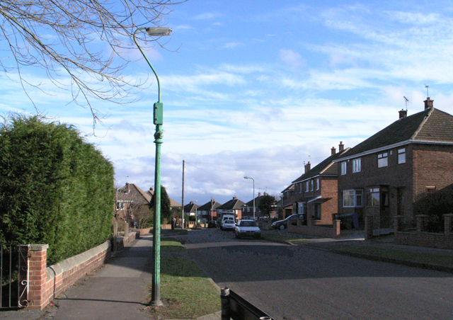 Cast Iron lamp post, Masefield Road