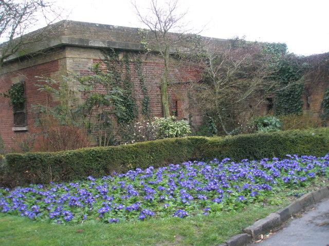 A wonderful flowerbed near Southsea Rose Garden