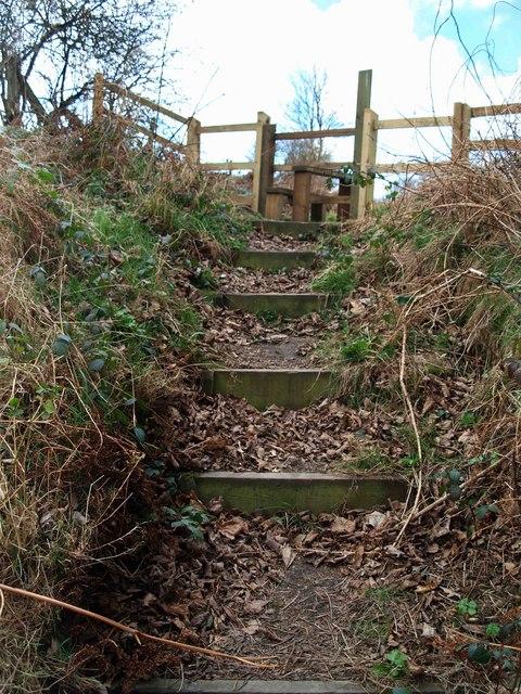 Steps up to stile on Roman Ridge
