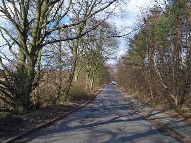 Old Warren Vale