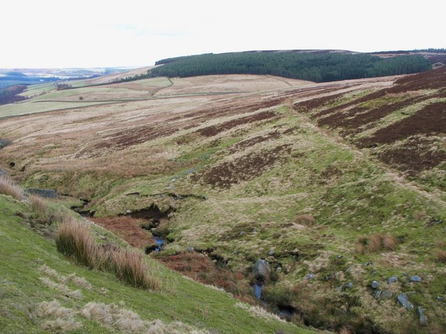 Moorland above Smithy Cleugh