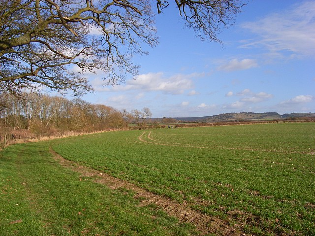 Farmland, Shirburn