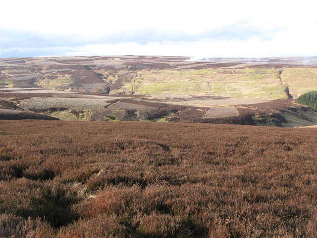 Moorland around Grindstone Cleugh