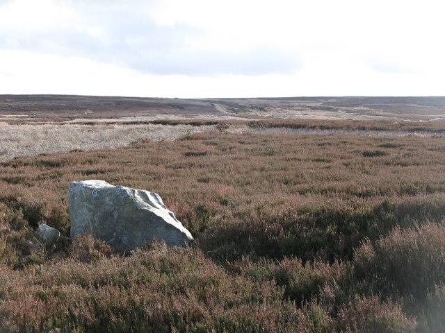 Hunstanworth Moor