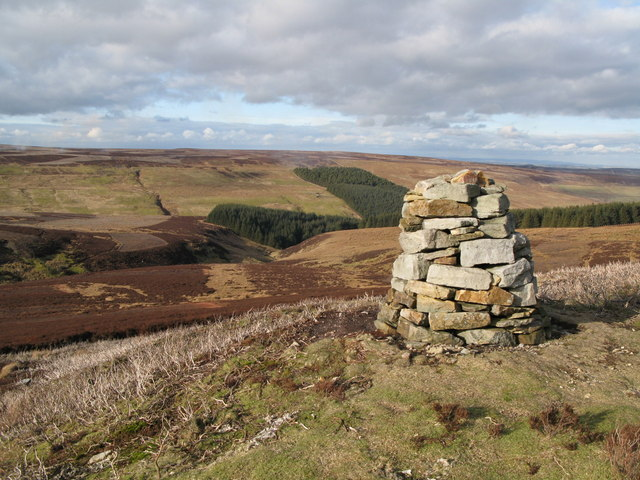 Grindstone Cleugh and Whitelees Plantation