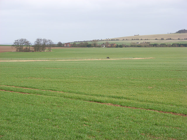 Farmland, Blewbury