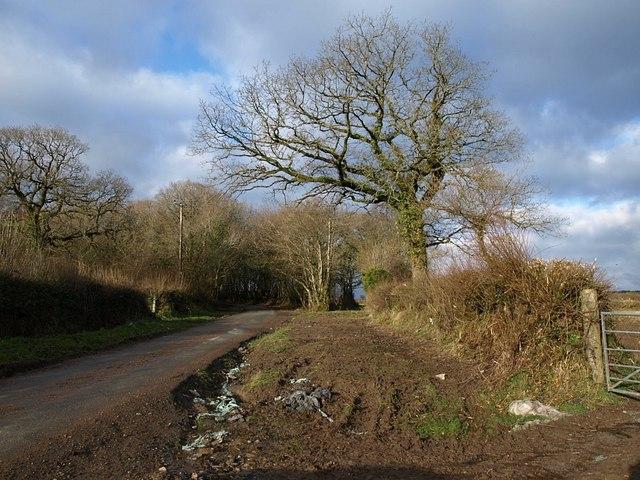 Lane west of Badharlick