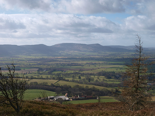 View from Easby Moor