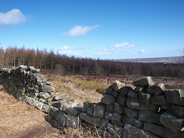 Damaged wall, Easby Moor