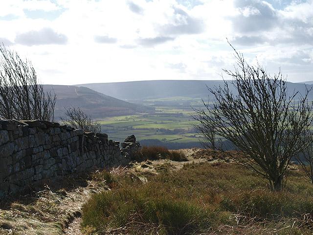 Edge of Easby Moor