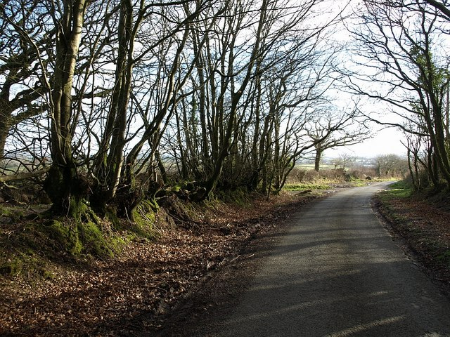 Lane on Tregeare Down