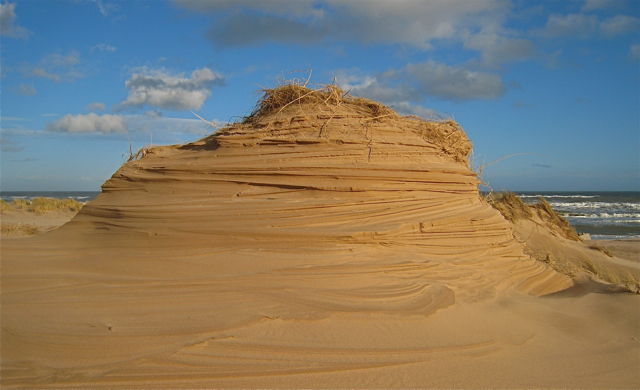 Wind eroded dune