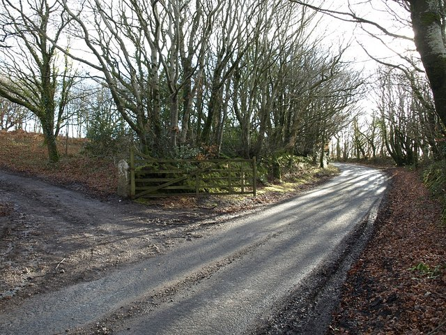 Track into access land, Tregeare Down