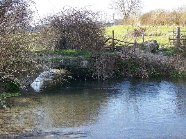 River Ebble near Odstock